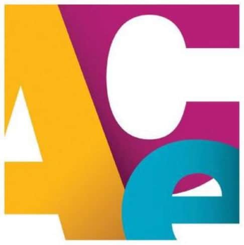 ace-mentor-program
